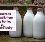 5 REASONS TO DRINK MILK FROM GLASS BOTTLES
