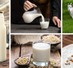YOUR GUIDE TO DIFFERENT TYPES OF MILK AT FOULGERS DAIRY